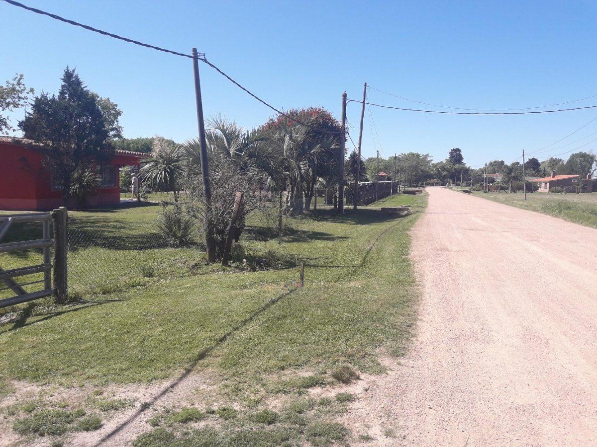 chacra 2 ha ruta 1 km 37   el chumbazo