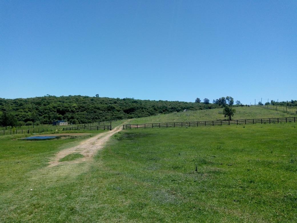 chacra 5 hectáreas