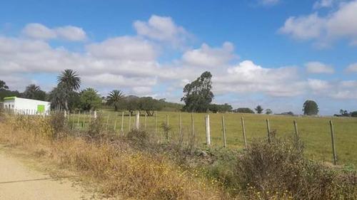 chacra casi 4 hectáreas