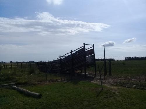 chacra de 10 hectáreas con casa