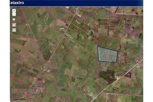 chacra de 26 hectareas en san jacinto