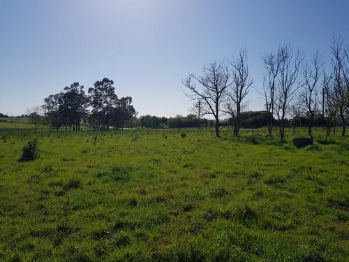 chacra de 2.7 hectáreas pegadas al pueblo.unicas.