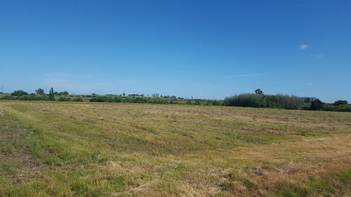 chacra de 3.5 hectareas con casa , excelente lugar tranquilo