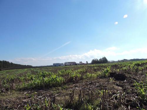 chacra de 3has- muy linda zona de montevideo rural