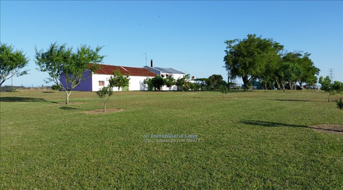 chacra en san jose (villa rodriguez).