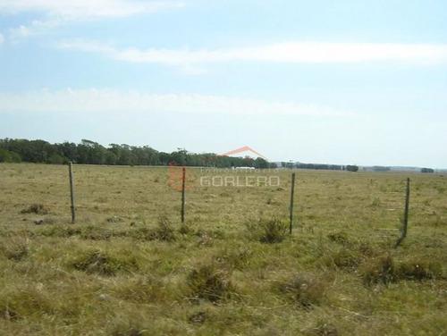 chacra  en uruguay  rocha-la paloma,  - ref: 25168