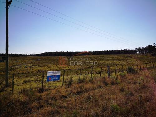 chacras en uruguay, maldonado, ruta 12 - ref: 21201