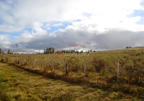 chacras en uruguay, punta del este, ruta 12 - ref: 20854