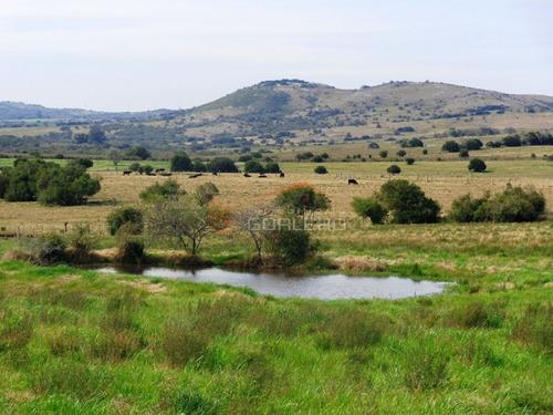 chacras en uruguay, punta del este, ruta 12 - ref: 21187