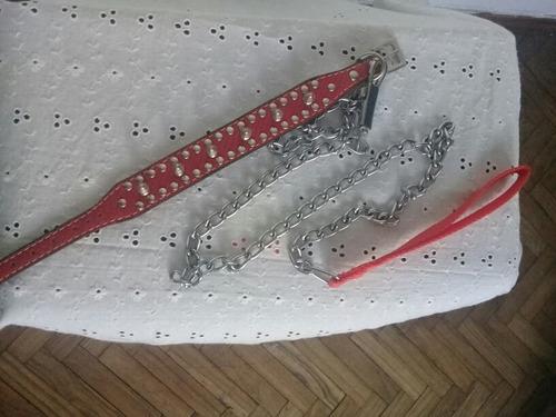 collar perro y cadena nuevo sin uso