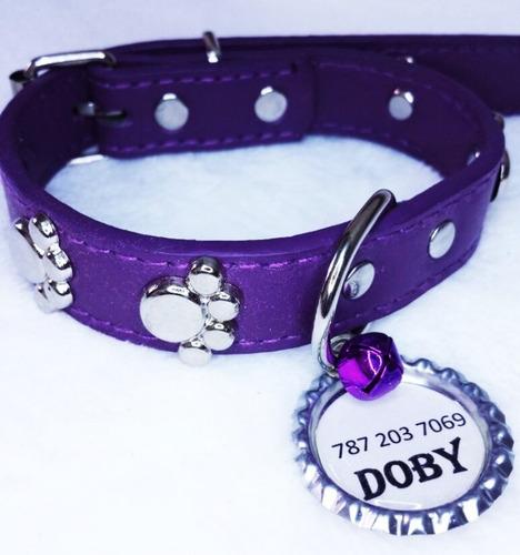 collar placa identificación mascota
