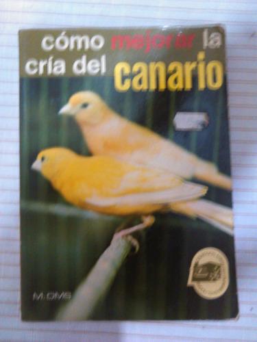 como mejorar la cría del canario