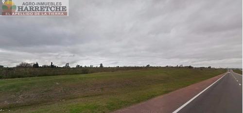 corredor agroindustrial y logístico inmobiliaria harretche