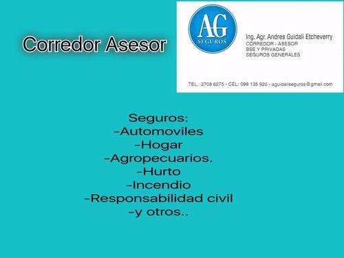 corredor asesor de seguros       age seguros