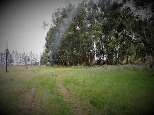 cuatro piedras 14 hectáreas en 2 fraccciones casco antiguo