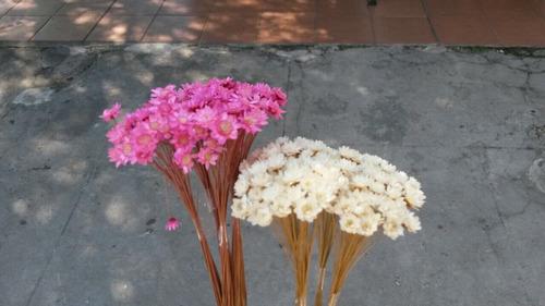 diamantinas flores secas - hakunna cotillón