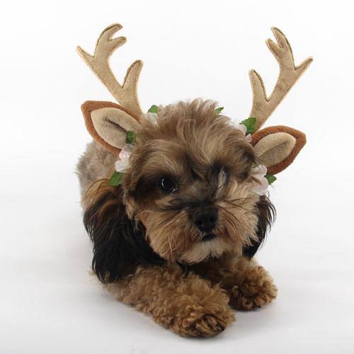 dog elk antler gorra de reno hat dog cat mascota trajes d