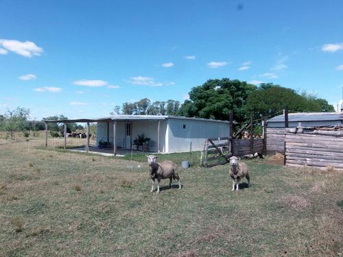 dos casas  equipadas  a 6 k  de cerrillos y 4 del rio tajes
