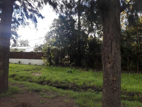dos terrenos calle mozart, villa foresti, las piedras