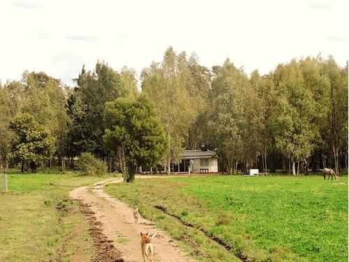 el colorado arbolado, con costa de arroyo 2 casas