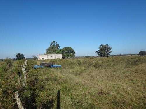 espectacular campo agrícola en excelente ubicación