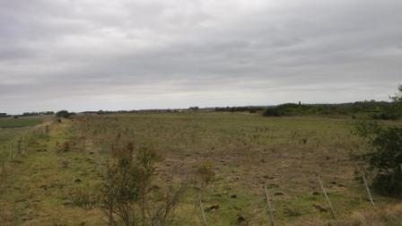 espectacular campo de 30 há en piedra de los indios ic160