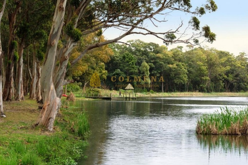 espectacular terreno en laguna blanca - ref: 1120