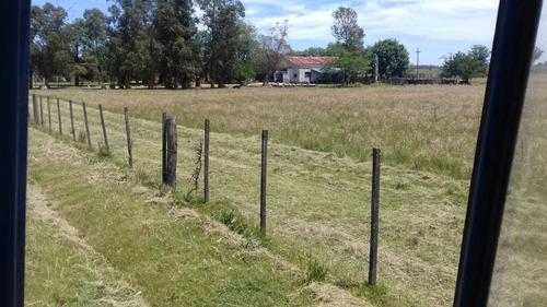 establecimiento agrícola-ganadero