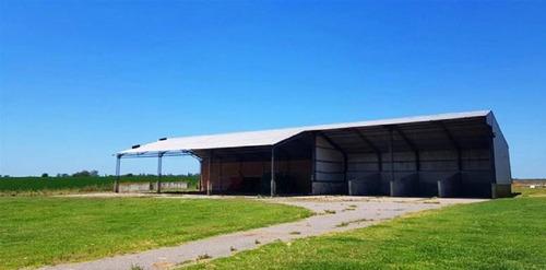 estancia agrícola ganadera en canelones. ref: 737