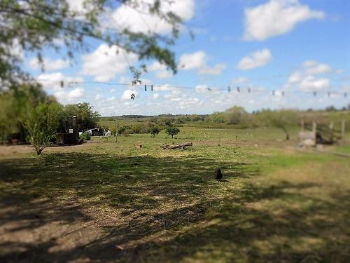 excelente campo  de 24 hectáreas  en canelones