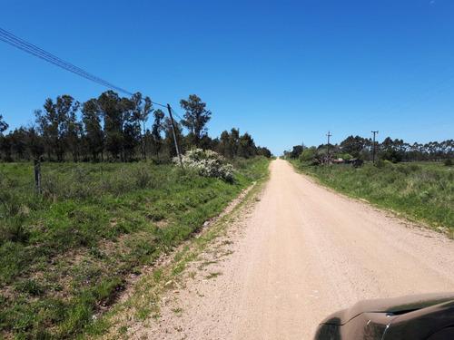 excelente chacra de 6 hectareas ruta 11 y camino solis chico