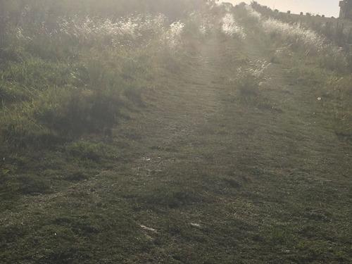 excelente oportunidad 19 hectareas tapia