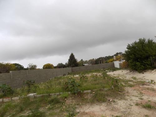 excelente terreno con muro perimetral en el pinar