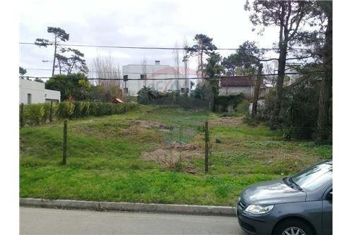 excelente terreno en jardines de córdoba, 600 mts.