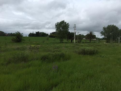 exclusivo solar de 1200 m2 en el prado nueva helvecia