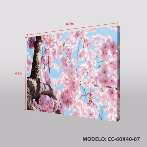 fabricamos tu cuadro decorativo en tela canvas 60x40 cm