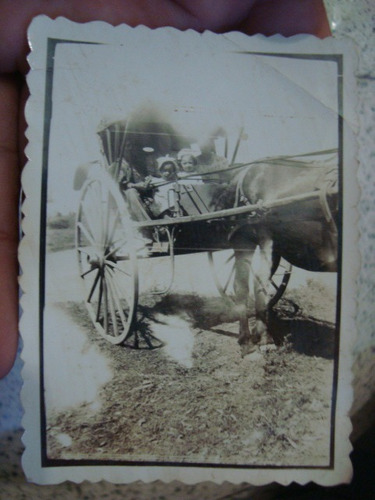 foto gauchos campo sulky caballo
