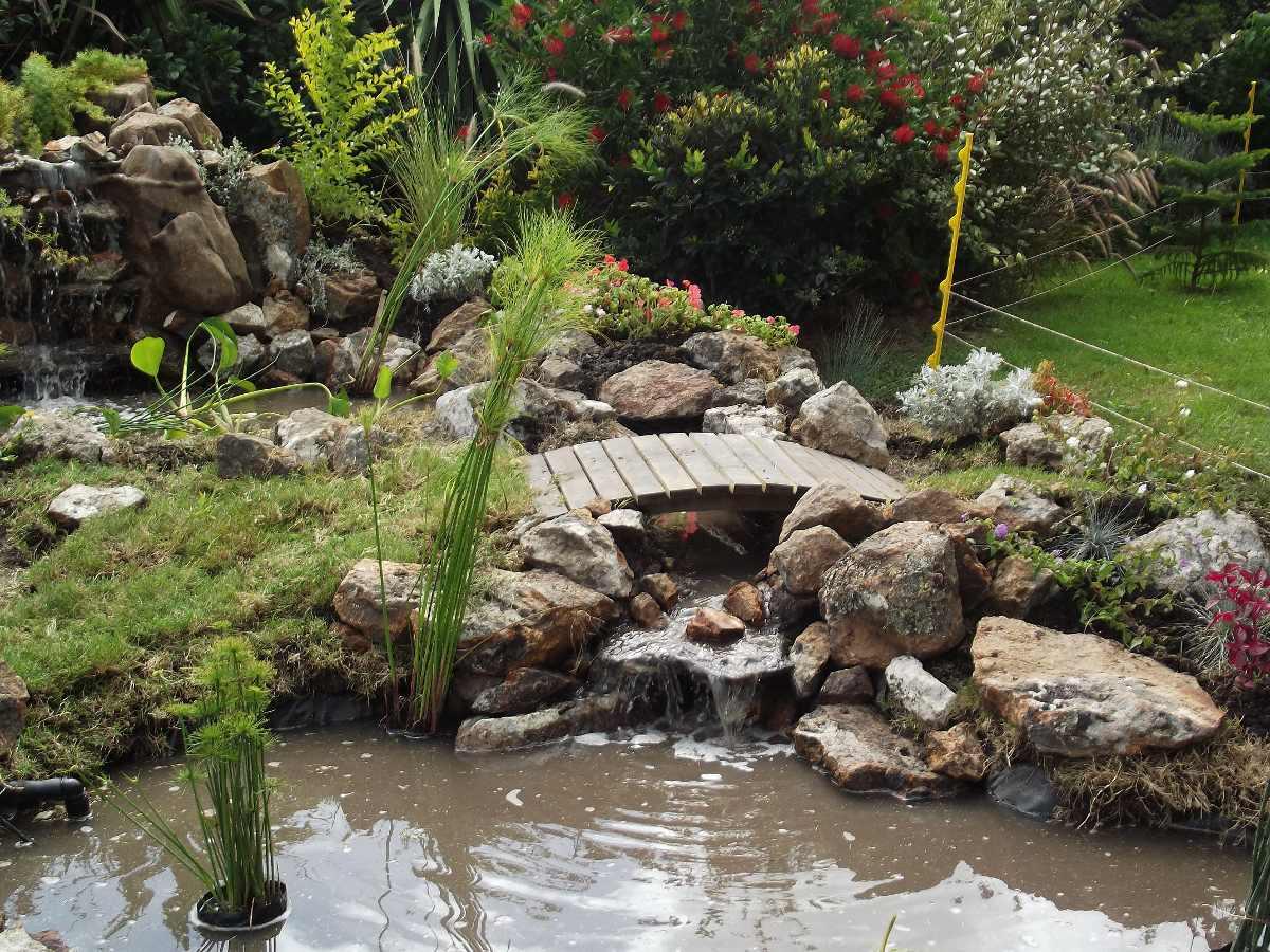 Fuentes de agua cascadas estanques en mercado libre for Accesorios para estanques de agua