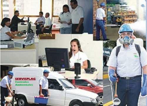 fumigaciones mejores.- control de plagas - garantia
