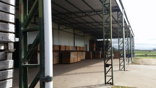 galpon  logistica industria