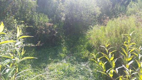 gran campo en rincón del colorado