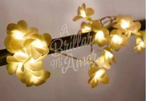 guirnalda de luces a pila  margaritas. a brillar mi amor.