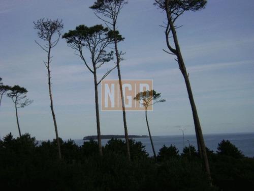 hermosa cabaña en pinares a pocos metros del mar - ref: 18631