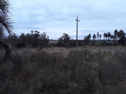 hermosa chacra de 6 hectareas por ruta 15 en el kilometro 35