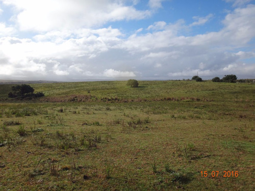 hermosas 36 hectáreas en garzon
