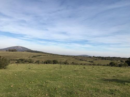 hermoso campo de 123 has. con vistas a las sierras