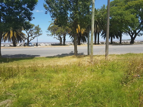 hermoso terreno en venta en primera fila de rambla costanera