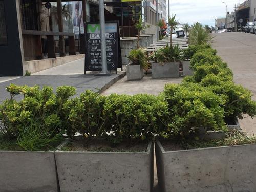 impecable local p/delivery centro península