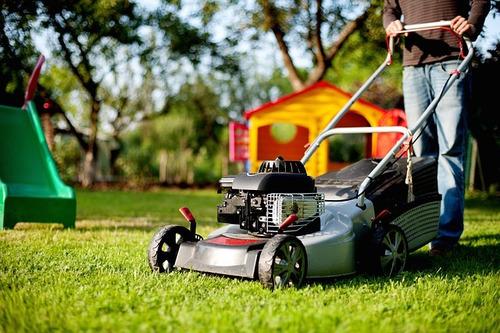 jardineria, podas, fumigaciones, limpieza de terrenos...