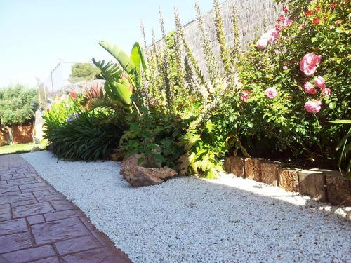 jardinero. limpieza de terrenos. colocación césped poda
